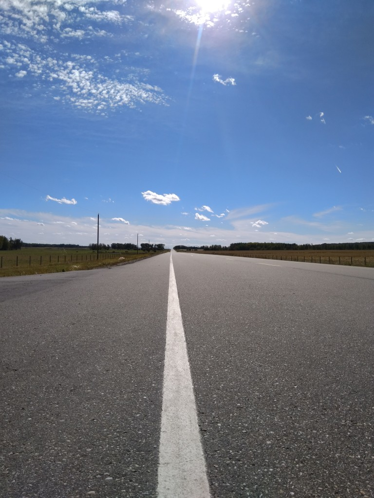 The Wildwood Road
